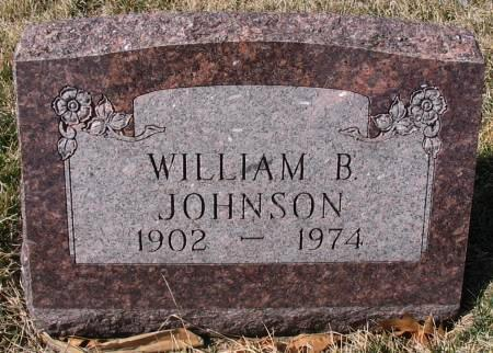 JOHNSON, WILLIAM BENTON - Van Buren County, Iowa | WILLIAM BENTON JOHNSON