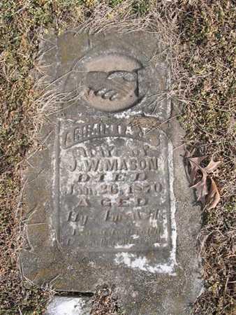 RENO MASON, ARIMINTA JANE - Van Buren County, Iowa | ARIMINTA JANE RENO MASON