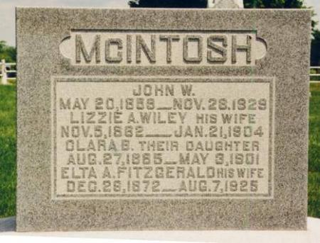 MCINTOSH, JOHN, LIZZIE, CLARA AND ELTA - Van Buren County, Iowa | JOHN, LIZZIE, CLARA AND ELTA MCINTOSH