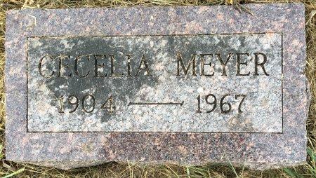 CARTNAL MEYER, CECELIA - Van Buren County, Iowa | CECELIA CARTNAL MEYER