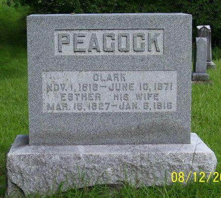 PEACOCK, CLARK - Van Buren County, Iowa | CLARK PEACOCK