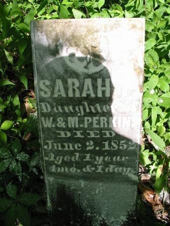 PERKINS, SARAH F. - Van Buren County, Iowa | SARAH F. PERKINS