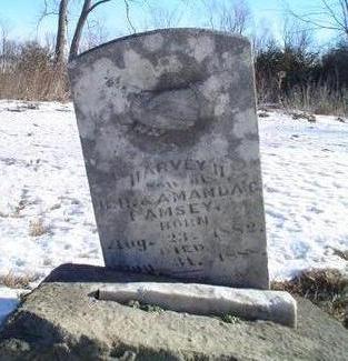 RAMSEY, HARVEY HENRY - Van Buren County, Iowa | HARVEY HENRY RAMSEY