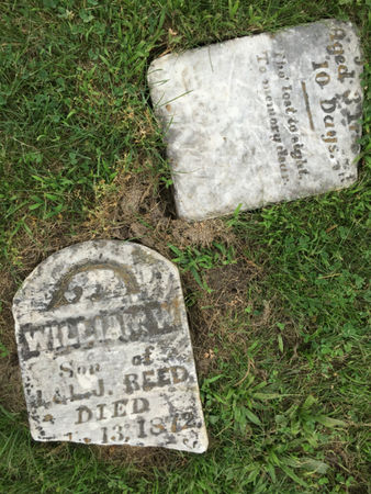 REED, WILLIAM W. - Van Buren County, Iowa   WILLIAM W. REED