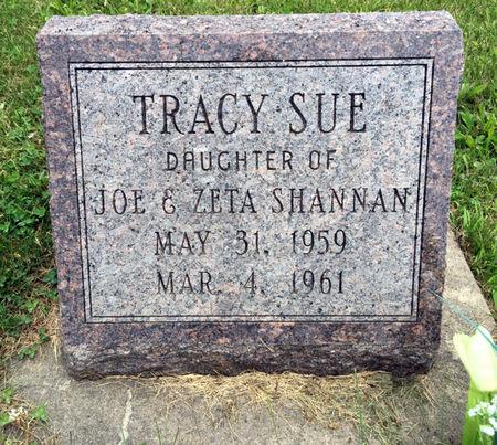 SHANNAN, TRACY SUE - Van Buren County, Iowa | TRACY SUE SHANNAN