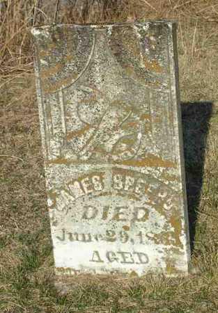 SPEERS, JAMES - Van Buren County, Iowa | JAMES SPEERS