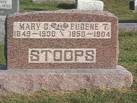 DYE STOOPS, MARY - Van Buren County, Iowa | MARY DYE STOOPS