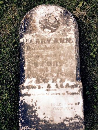 STORY, MARY ANN - Van Buren County, Iowa | MARY ANN STORY