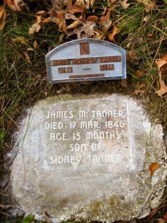 TANNER, JAMES MONROE - Van Buren County, Iowa | JAMES MONROE TANNER
