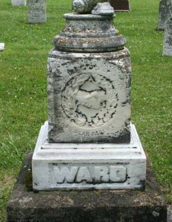 CRAIN WARD, ELIZA - Van Buren County, Iowa | ELIZA CRAIN WARD