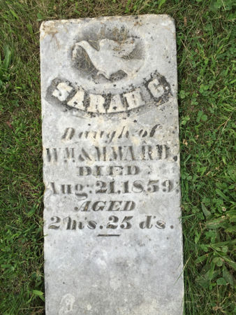 WARD, SARAH G. - Van Buren County, Iowa | SARAH G. WARD