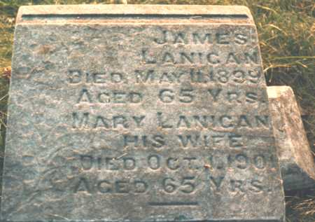 DAVIS LANIGAN, MARY - Wapello County, Iowa | MARY DAVIS LANIGAN