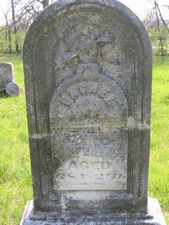 WALLACE, RACHEL 1811-1879 - Wapello County, Iowa | RACHEL 1811-1879 WALLACE