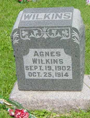 WILKINS, AGNES - Wapello County, Iowa | AGNES WILKINS