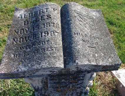 BALES, ALBERT E. - Warren County, Iowa | ALBERT E. BALES