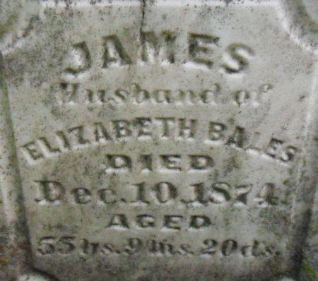 BALES, JAMES - Warren County, Iowa   JAMES BALES