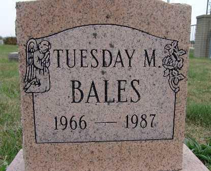 BALES, TUESDAY M. - Warren County, Iowa | TUESDAY M. BALES