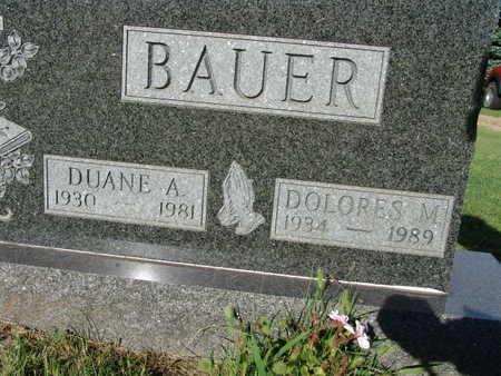 BAUER, DOLORES M. - Warren County, Iowa | DOLORES M. BAUER