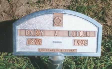 DAVIS BUTLER, DAISY ANN - Warren County, Iowa | DAISY ANN DAVIS BUTLER