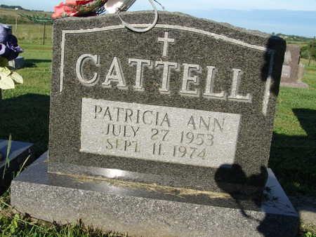 CATTELL, PATRICIA ANN - Warren County, Iowa | PATRICIA ANN CATTELL