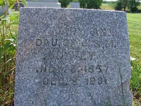 DAVEY, MARY ANN - Warren County, Iowa | MARY ANN DAVEY