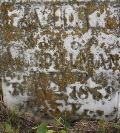 DILLMAN, DAVID W. - Warren County, Iowa   DAVID W. DILLMAN