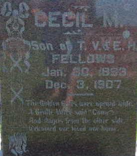 FELLOWS, CECIL M - Warren County, Iowa | CECIL M FELLOWS