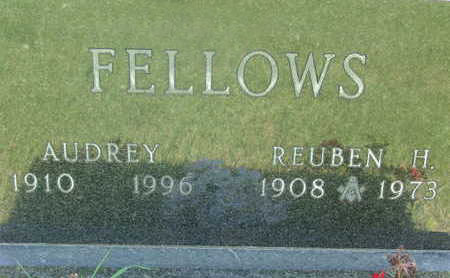 FELLOWS, AUDREY - Warren County, Iowa | AUDREY FELLOWS