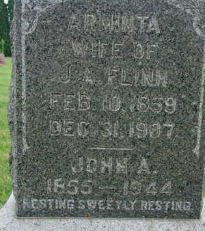 FLINN, ARMINTA - Warren County, Iowa | ARMINTA FLINN