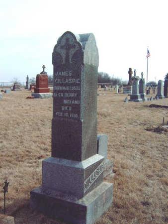 GILLASPIE, JAMES - Warren County, Iowa | JAMES GILLASPIE