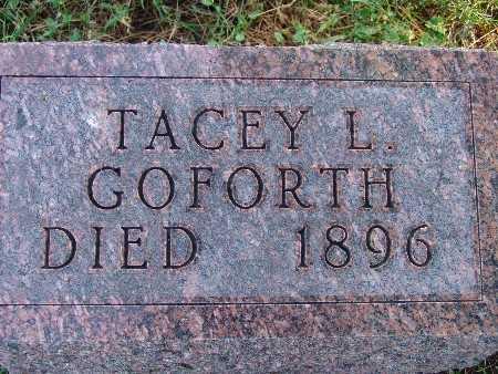 GOFORTH, TACEY L - Warren County, Iowa | TACEY L GOFORTH