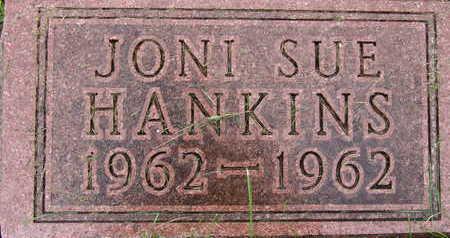 HANKINS, JONI SUE - Warren County, Iowa | JONI SUE HANKINS