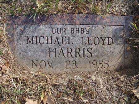 HARRIS, MICHAEL LLOYD - Warren County, Iowa | MICHAEL LLOYD HARRIS