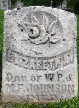 JOHNSON, ELIZABETH A. - Warren County, Iowa | ELIZABETH A. JOHNSON