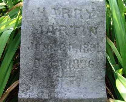 MARTIN, HARRY - Warren County, Iowa | HARRY MARTIN