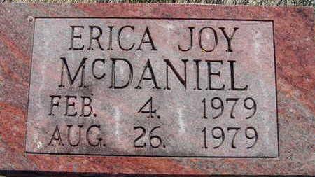 MCDANIEL, ERICA JOY - Warren County, Iowa | ERICA JOY MCDANIEL