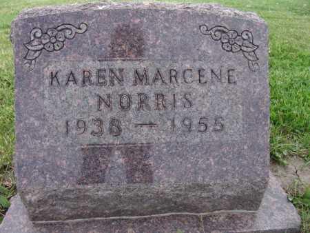 NORRIS, KAREN MARCENE - Warren County, Iowa | KAREN MARCENE NORRIS
