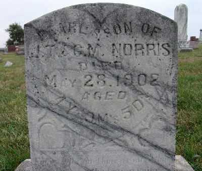 NORRIS, PEARL S. - Warren County, Iowa | PEARL S. NORRIS