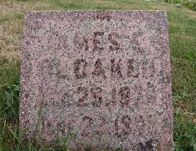 OLDAKER, JAMES E. - Warren County, Iowa | JAMES E. OLDAKER
