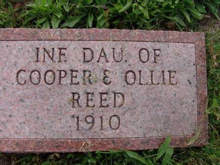 REED, INF. DAU. - Warren County, Iowa | INF. DAU. REED