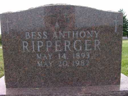 ANTHONY RIPPERGER, BESS - Warren County, Iowa | BESS ANTHONY RIPPERGER
