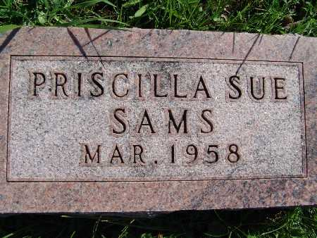 SAMS, PRISCILLA SUE - Warren County, Iowa | PRISCILLA SUE SAMS