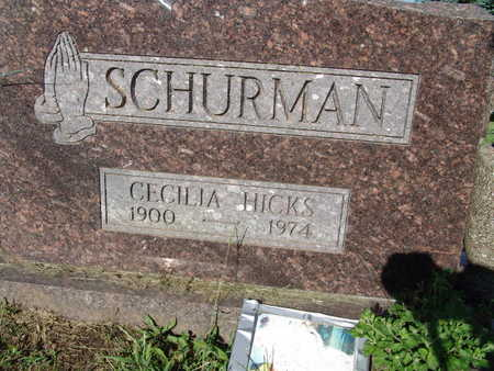 SCHURMAN, CECILIA HICKS - Warren County, Iowa | CECILIA HICKS SCHURMAN