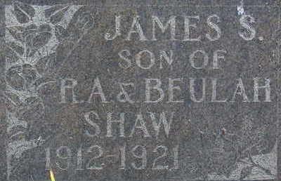 SHAW, JAMES S - Warren County, Iowa | JAMES S SHAW
