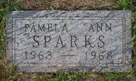 SPARKS, PAMELA ANN - Warren County, Iowa   PAMELA ANN SPARKS