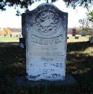 STOGSDILL, MARY E. - Warren County, Iowa | MARY E. STOGSDILL