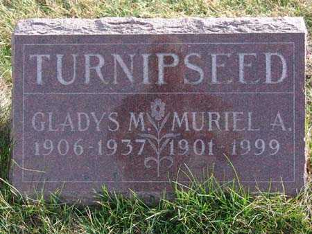 TURNIPSEED, GLADYS M. - Warren County, Iowa | GLADYS M. TURNIPSEED