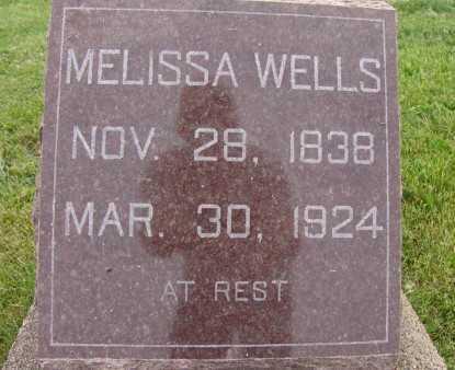 WELLS, MELISSA - Warren County, Iowa | MELISSA WELLS