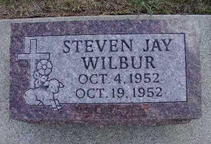WILBUR, STEVEN JAY - Warren County, Iowa | STEVEN JAY WILBUR