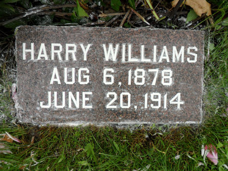 WILLIAMS, HARRY - Warren County, Iowa | HARRY WILLIAMS